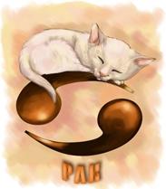 В год кот по знаку рак