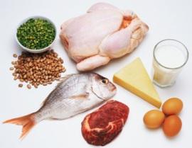 Белковая диета (меню, отзывы) Разновидности