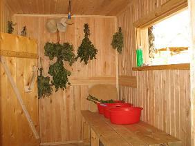 Строительство бани: размеры и внутреннее устройство. Дерево для строительства бани