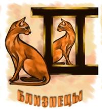 Гороскоп на 2011 год по знакам зодиака: Новый год Кота и Кролика – гороскоп для овна, тельца, близнецов, рака