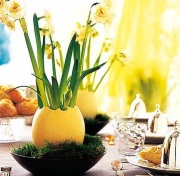 цветочный горшок из яичной скорлупы
