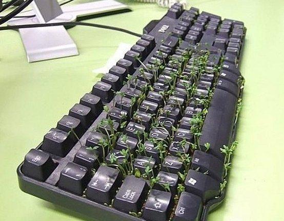 цветочный горшок из клавиатуры