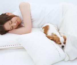 Подушка, одеяло, матрас – как часто следует менять спальные аксессуары