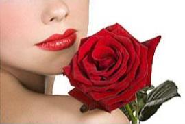 Роза – на языке цветов. О чем говорит цвет розы