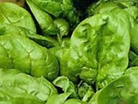 Витамины – источники полноценного развития, красоты и здоровья