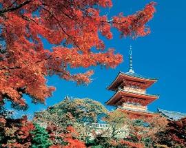 Бесплатный тест: Хорошо ли ты знаешь Японию?